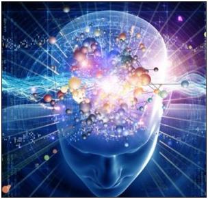 Восприятие и регуляция головным мозгом  сенсорной информации