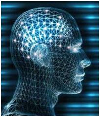 История современной нейрофизиологии или  выдающиеся Бехтеревы